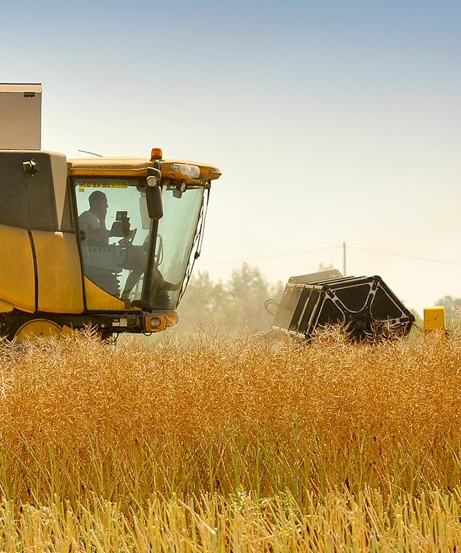 agriculture entrepreneuriat professionnel